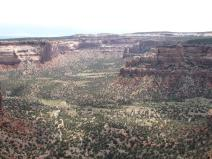 More Colorado National Monument, where we saw tafoni weathering, cross bedding in the sandstone (preserved sand dunes), numerous canyons, and many spectacular features formed by weathering and erosion. One of the rock formations exposed here, the Morrison, contains many fossils of Cretaceous dinosaurs!