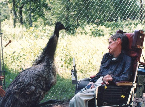 """I just like this picture of Stephen Hawking and friend -- meeting of the minds?"" an excited Suntzeff quips. (Credit: Edward S. Fry.)"